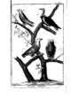 Encyclopedie volume 5-072.png