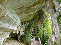 Entrance of Traders' Cave (15482316960).jpg