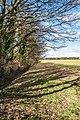 Eppleworth Rd, Cottingham IMG 9507 - panoramio.jpg