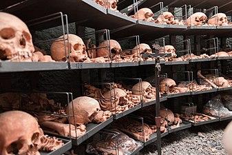 Erasmuskapelle - mortal remains - left.jpg