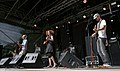 Ernesty International Donauinselfest 2014 30.jpg