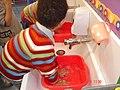 Escolas Mas i Perera-Estalvi aigua.jpg