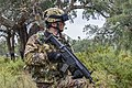 Exercise TRIDENT JUNCTURE (22804826445).jpg