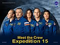 Expedition 15 crew poster.jpg