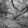 Exterieur overzicht tuin achterzijde - 20000507 - RCE.jpg