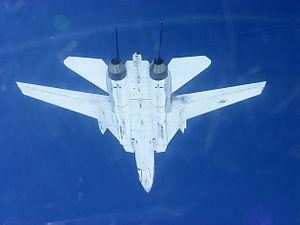 F-14B VF-11 Bottom - 2005.jpg