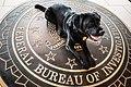 FBI Police K9 (34164850102).jpg