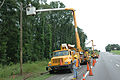 FEMA - 13786 - Photograph by Mark Wolfe taken on 07-11-2005 in Alabama.jpg