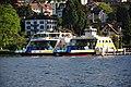 FS Schwan & Horgen - Horgen - Zürichsee 2010-06-04 19-29-04.JPG