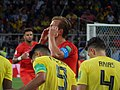 FWC 2018 - Round of 16 - COL v ENG - Photo 024.jpg