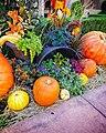 Fall Harvest Still Life - Flickr - pinemikey.jpg
