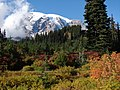 Fall colors in Paradise meadow. Clouds around Mt Rainier. (c61e11b8a0fb48abb16d88bf0c7c52ec).JPG