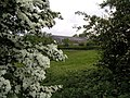 Farm building - geograph.org.uk - 14934.jpg