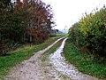 Farm track near Welton le Marsh - geograph.org.uk - 620139.jpg