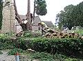 Felling trees, St Mary's Churchyard, Linton - geograph.org.uk - 831953.jpg