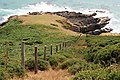 Fence down the Coastal Slope - geograph.org.uk - 1391112.jpg