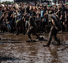 Festivalgelände - Wacken Open Air 2015-2698.jpg