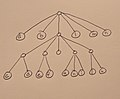 Finger tree one spine.jpg