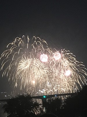 Fireworks - The firework display organized by Hanwah Company in Seoul.