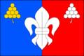 Flag Praksice (CZ).png