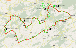 Routekaart Waalse Pijl 2015