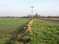 Flecks Lane, Guilden Morden, Cambs - geograph.org.uk - 104768.jpg