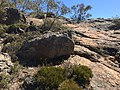 Flinders Ranges SA 5434, Australia - panoramio (172).jpg