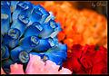 Flores de madera (4087316185).jpg