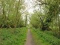 Footpath, Cornard Riverside Walk - geograph.org.uk - 1021645.jpg