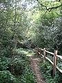 Footpath to Fowley Lane - geograph.org.uk - 1376717.jpg