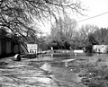 Ford, North Warnborough, Hampshire - geograph.org.uk - 573181.jpg