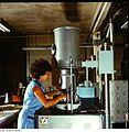 Fotothek df n-15 0000143 Facharbeiter für Anlagentechnik.jpg