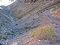 Frenchman Mountain trail 3.jpg