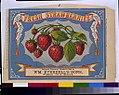 Fresh strawberries - Wm. Everdell's Sons, N.Y. LCCN93504445.jpg