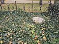 Friedhof der Dorotheenstädt. und Friedrichwerderschen Gemeinden Dorotheenstädtischer Friedhof Okt. 2016 - 4.jpg