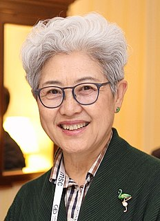 Fu Ying Chinese politician