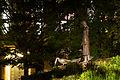 Gänseliesel bei Nacht 20140502 3.jpg