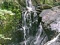 Ganllwyd NNR - panoramio (7).jpg