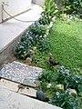 Gardens in Baghdad 68.jpg