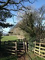Gate on footpath, Marldon - geograph.org.uk - 715654.jpg