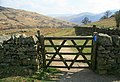 Gate to Aira Force - geograph.org.uk - 783418.jpg