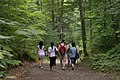 GatineauPark-Hiking.JPG