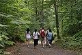 GatineauPark-Hiking.JPG