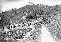 Gebirgsinfanteristen in der Gegend von Bellinzona - CH-BAR - 3239558.tif