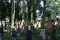 Gelnhausen Jüdischer Friedhof 22.JPG
