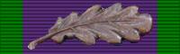 General Service Medal 1962 BAR MID