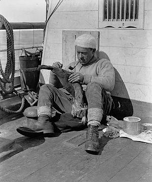 George Murray Levick - George Murray Levick aboard ''Terra Nova'' in 1910.