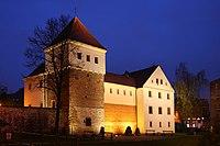 Gliwice - Castle by night 01.JPG