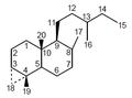 Gnafalano - Numeración.png