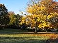 Goethe-park 5.JPG